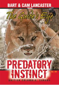 Preditory Instinct